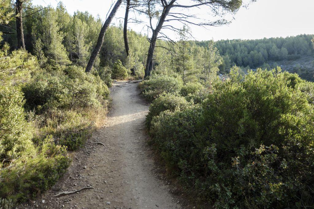 Chemin du Belvedere
