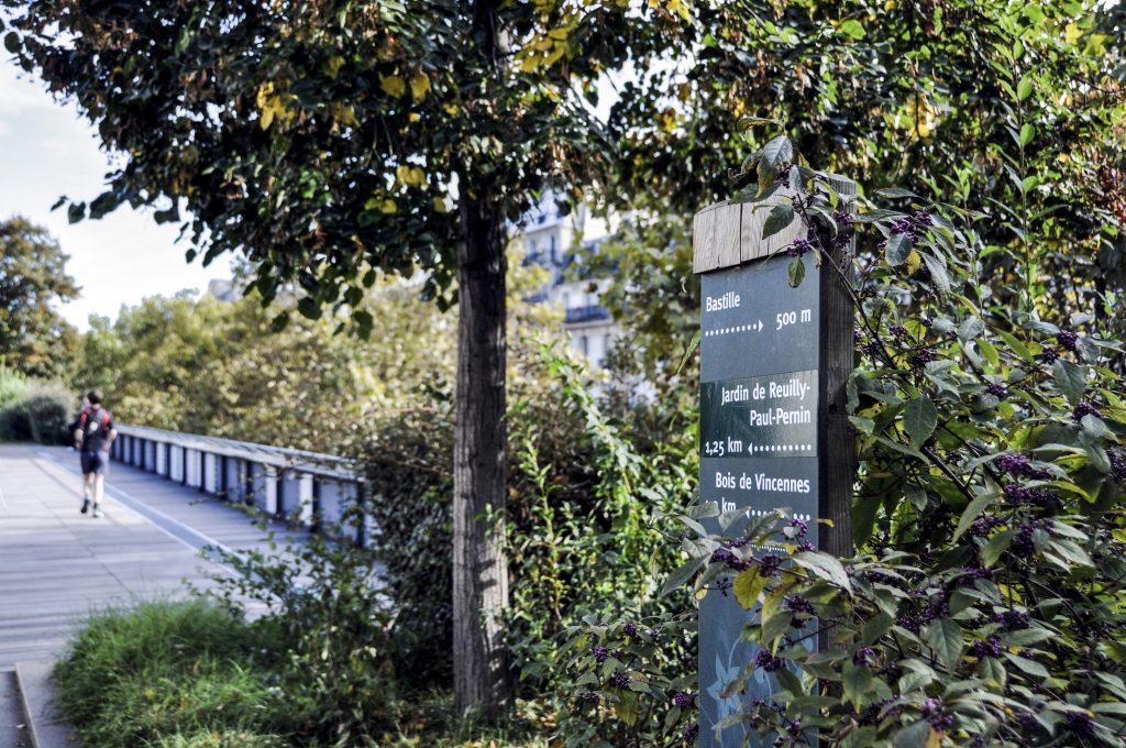 Coulée verte depuis Bastille appelée aussi promenade plantée