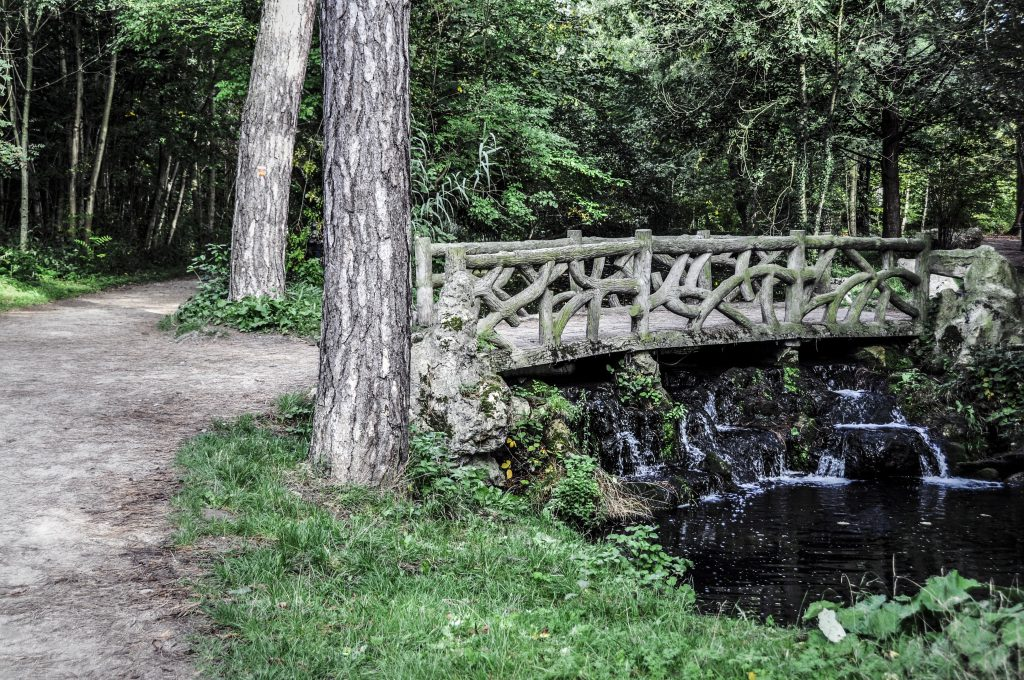 Pont dans le bois de Vincennes