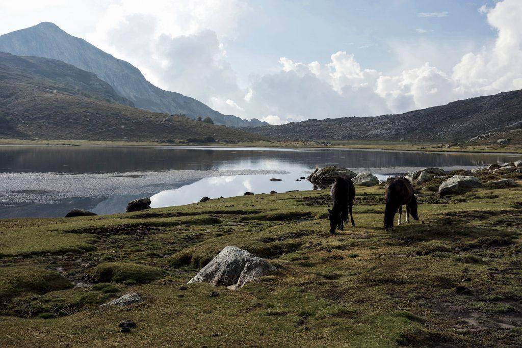Lac de Nino dans le GR20 Nord