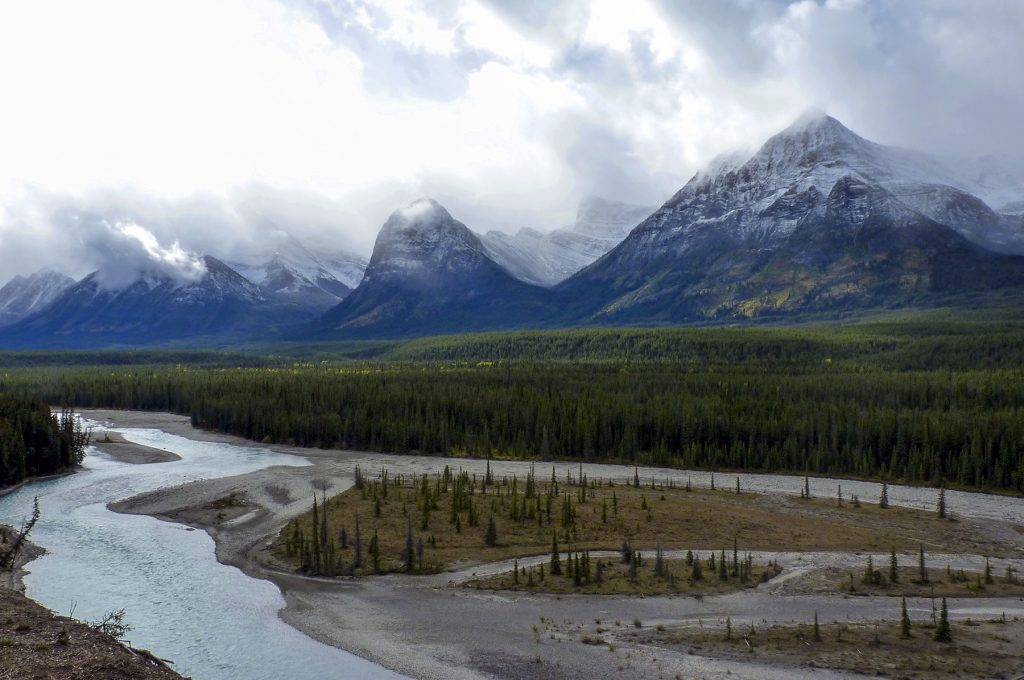 La promenade des glaciers près de Jasper