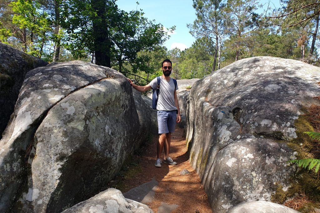 Chemin dans la forêt de Barbizon